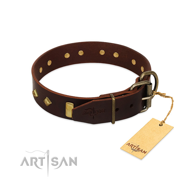 Leather dog collar with rust resistant D-ring for walking