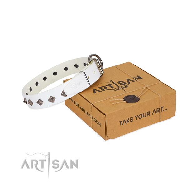 Top notch adornments on leather dog collar for fancy walking