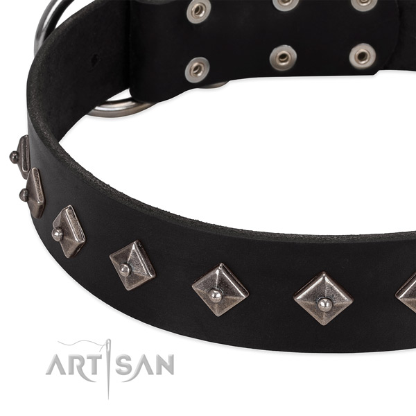 Easy adjustable collar of natural leather for your beautiful four-legged friend