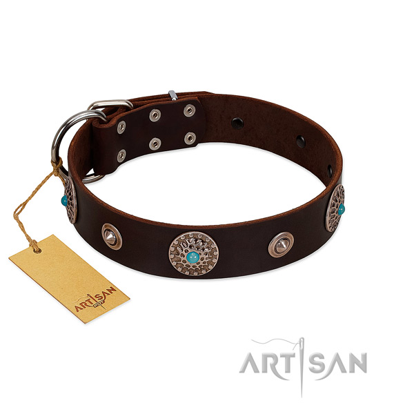 Quality natural leather dog collar crafted for your canine