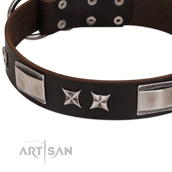 Quality genuine leather dog collar with rust resistant hardware