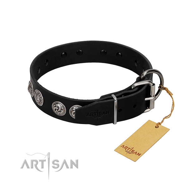 Remarkable full grain natural leather collar for your four-legged friend walking