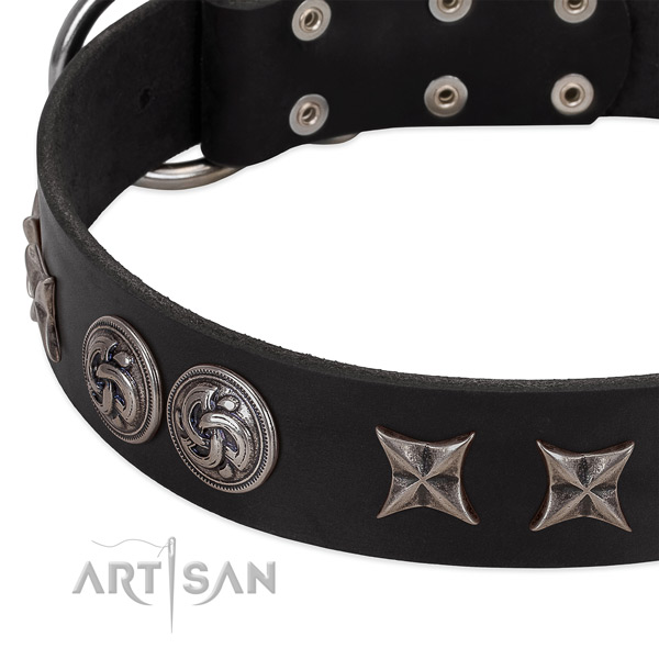 Leather collar with exceptional decorations for your pet