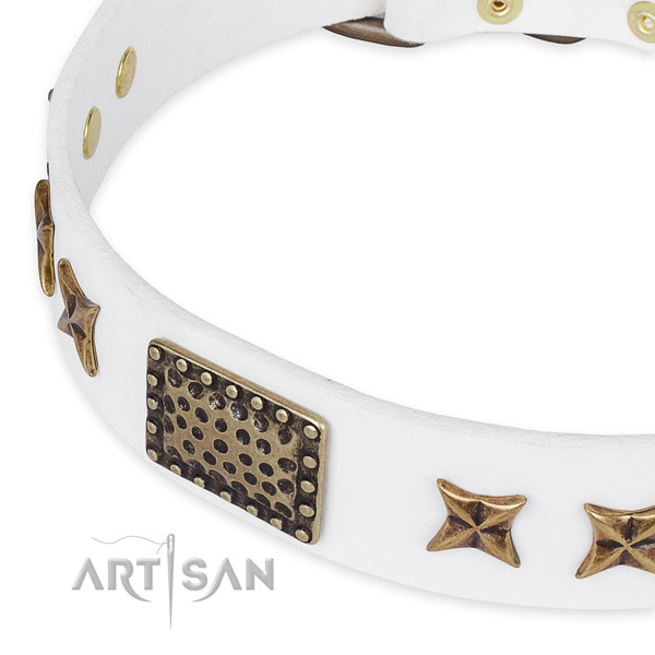 Full grain leather collar with corrosion resistant buckle for your stylish doggie