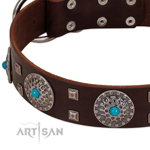 Soft full grain leather dog collar with remarkable embellishments