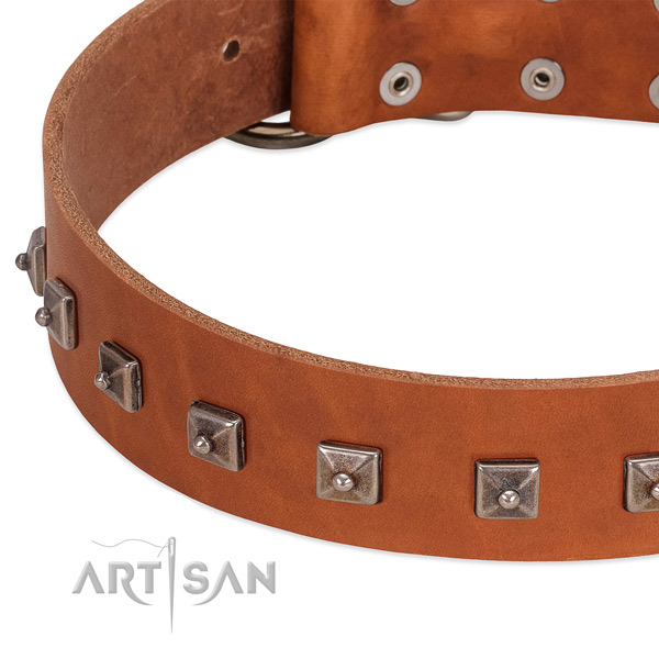 Top notch full grain genuine leather dog collar with unique embellishments