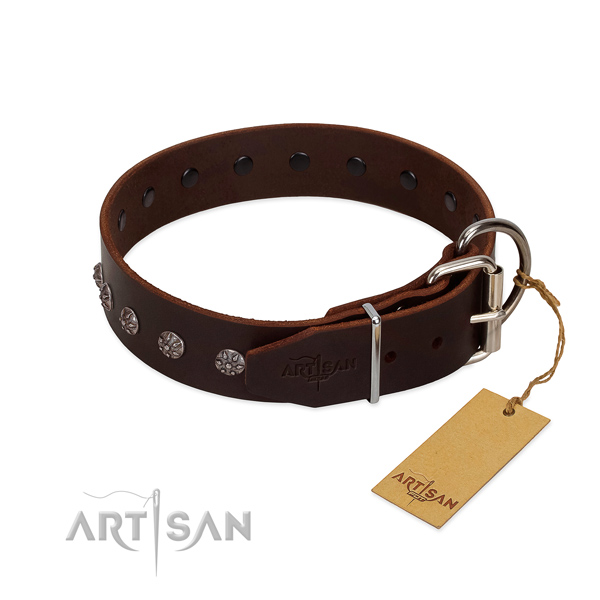 Reliable full grain genuine leather dog collar with decorations for your four-legged friend