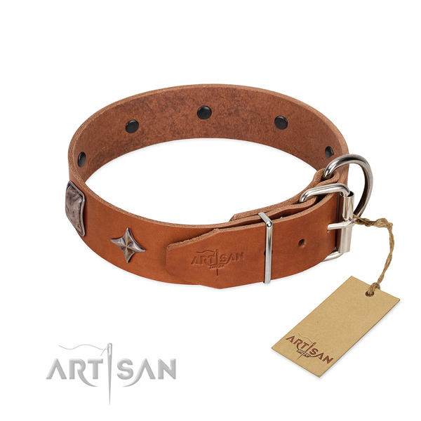 Soft to touch natural leather dog collar with top-notch decorations