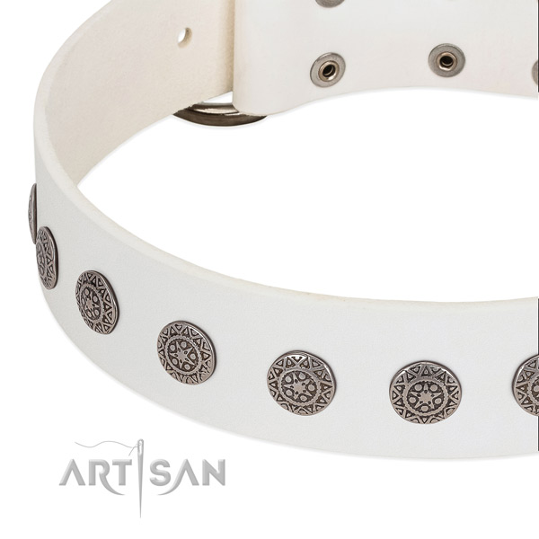 Adjustable genuine leather collar with adornments for your canine