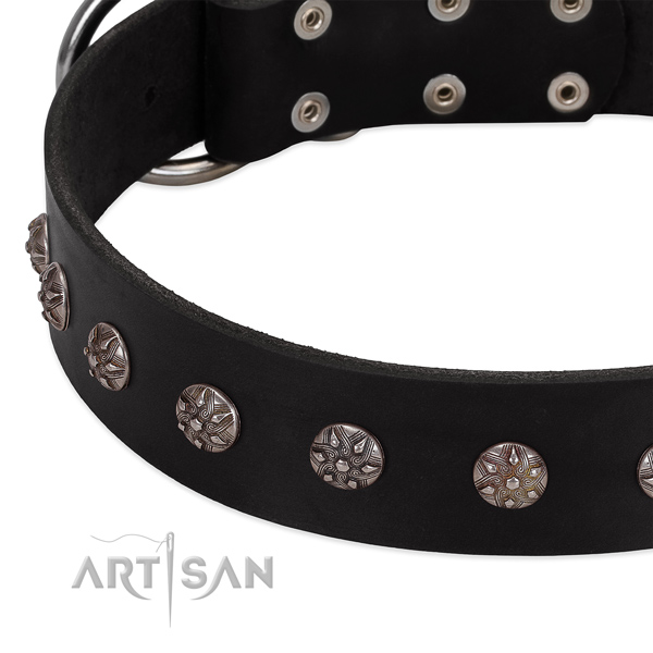 Flexible genuine leather dog collar with stunning studs