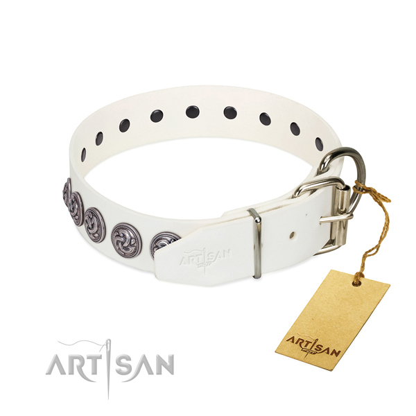Rust-proof buckle on genuine leather dog collar for daily walking your four-legged friend