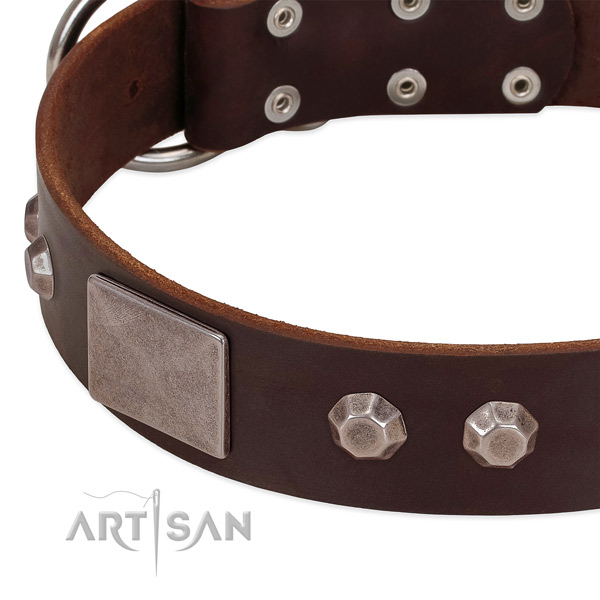 Comfy wearing quality full grain natural leather dog collar