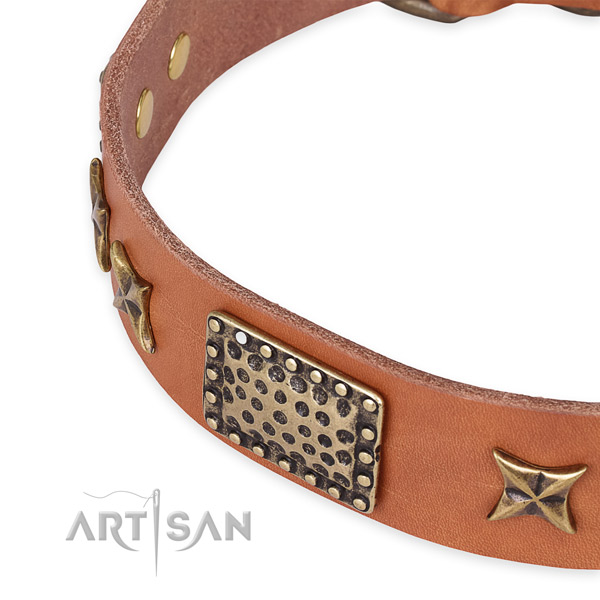 Full grain leather collar with durable hardware for your attractive pet