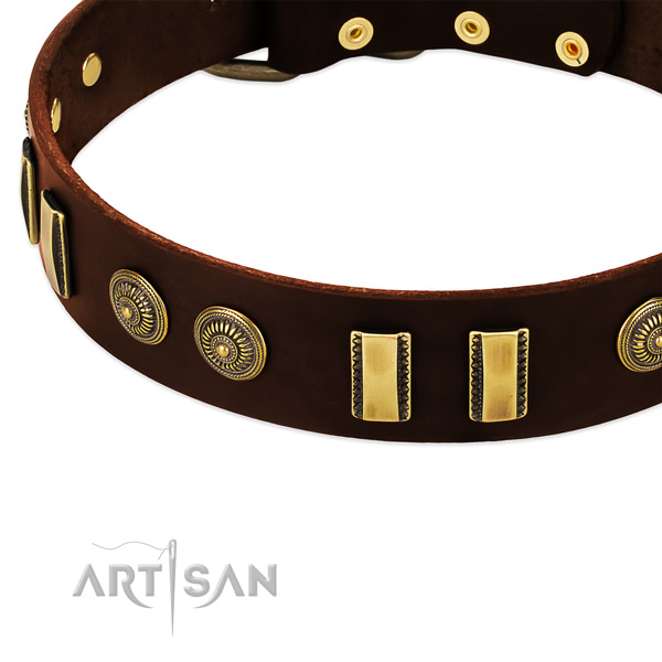 Strong embellishments on full grain leather dog collar for your dog