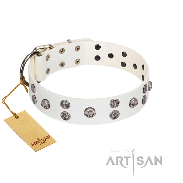 Everyday walking adorned leather collar for your pet