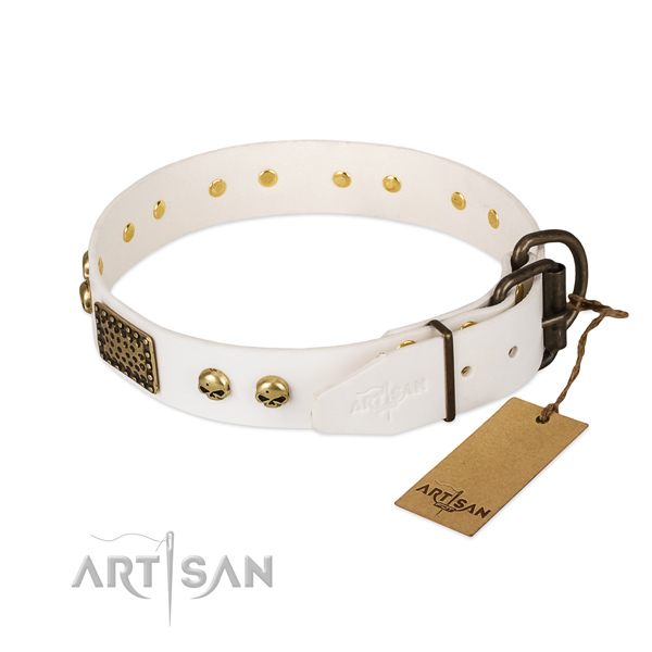 Easy adjustable genuine leather dog collar for everyday walking your four-legged friend