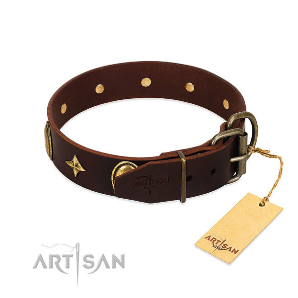 Quality full grain natural leather dog collar with exceptional adornments