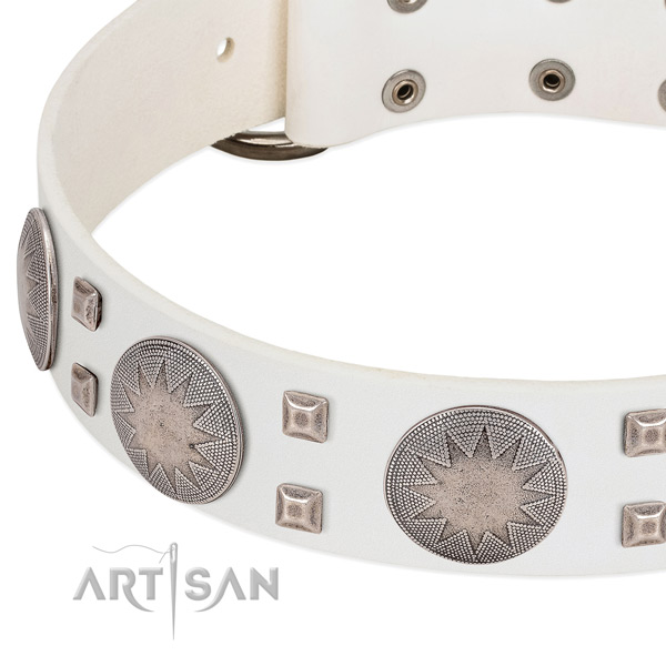 Rust-proof buckle on full grain leather collar for daily walking your four-legged friend