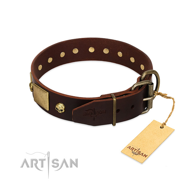 Best quality leather dog collar with corrosion proof embellishments