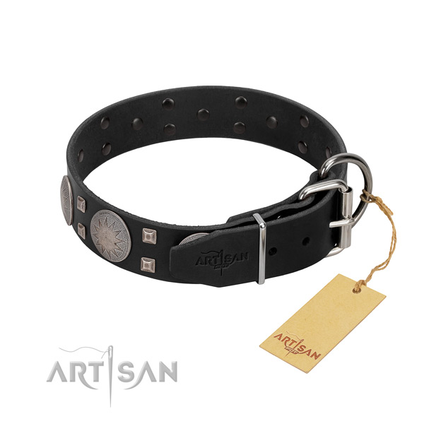 Awesome full grain genuine leather dog collar for stylish walking your four-legged friend