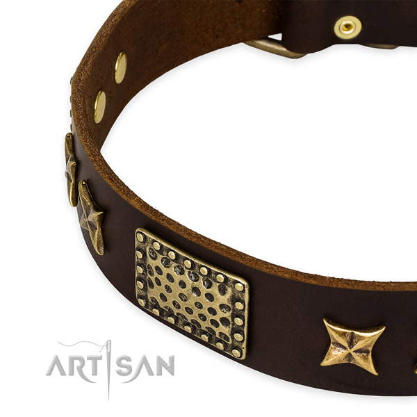 Leather collar with reliable buckle for your beautiful four-legged friend