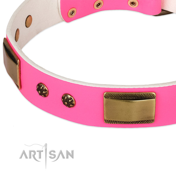 Corrosion proof D-ring on genuine leather dog collar for your four-legged friend