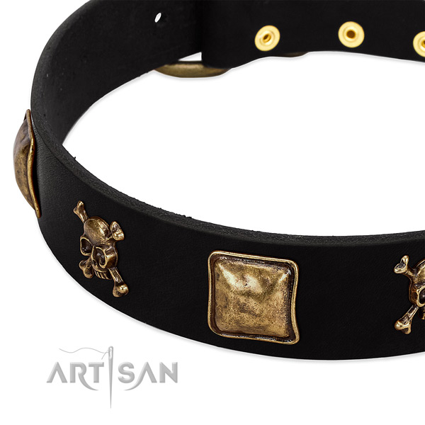 Quality full grain natural leather collar with embellishments for your pet