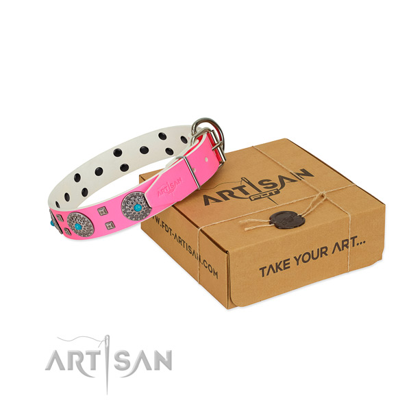 Everyday use leather dog collar with significant embellishments
