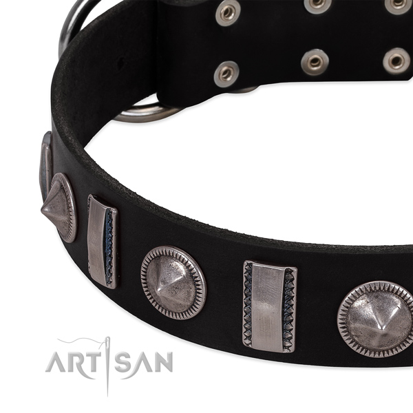 Stylish full grain leather dog collar with durable decorations