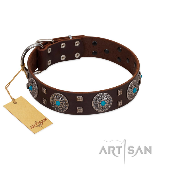 Easy wearing full grain leather dog collar with unique embellishments