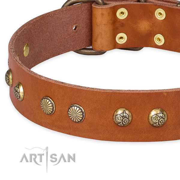 Full grain natural leather collar with strong buckle for your attractive pet
