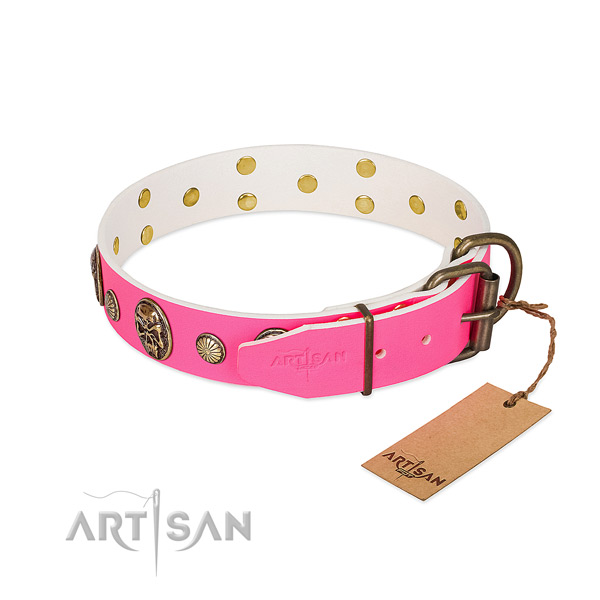 Reliable decorations on full grain leather dog collar for your dog