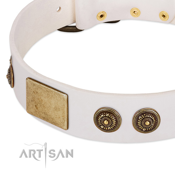 Adorned dog collar handcrafted for your attractive pet