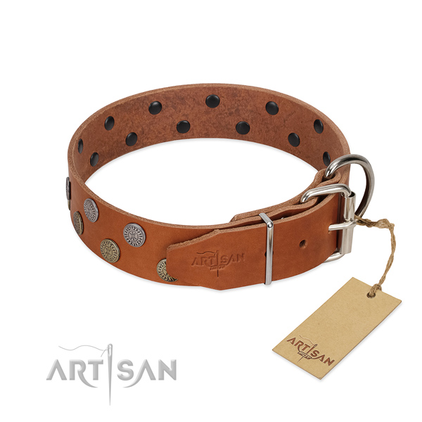 Corrosion resistant hardware on genuine leather dog collar for fancy walking
