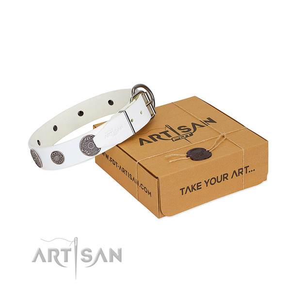 Stylish dog collar of full grain natural leather