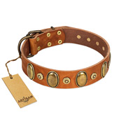 """Crystal Sand"" FDT Artisan Tan Leather dog Collar with Vintage Looking Oval and Round Studs"