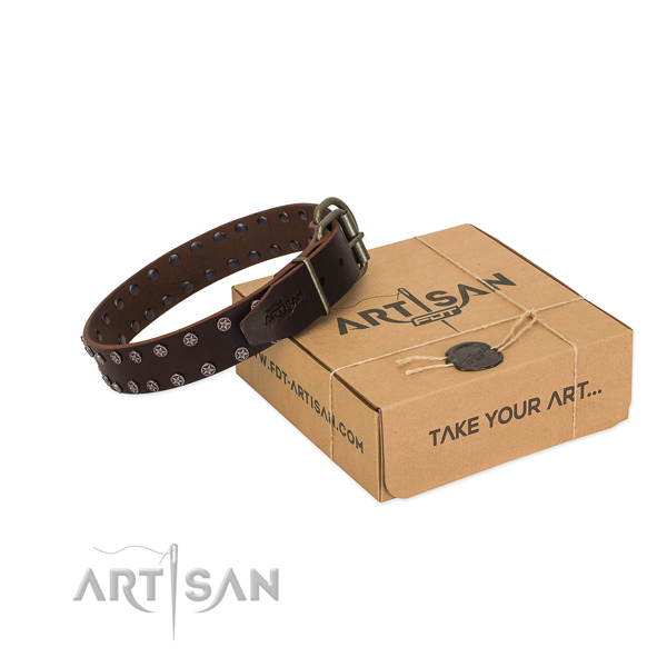 Reliable natural leather dog collar with adornments for your impressive four-legged friend