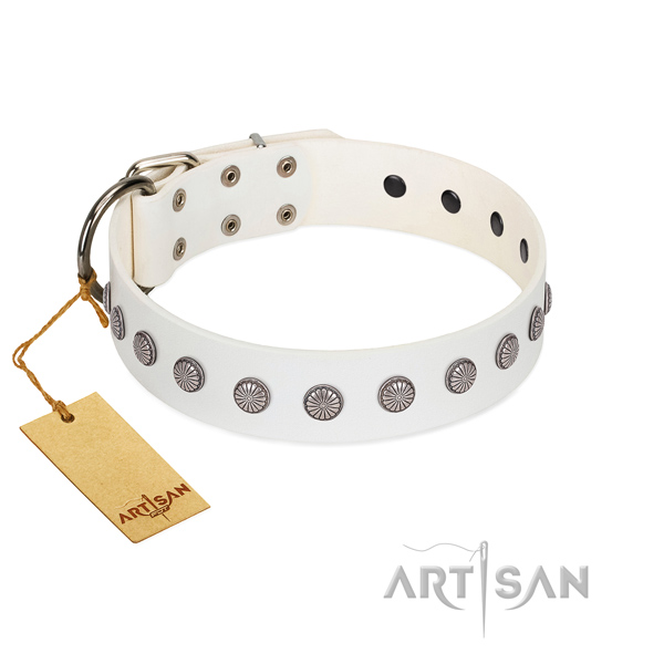 Exceptional full grain leather collar for your canine