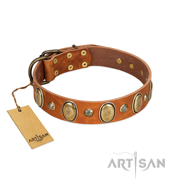 Full grain leather dog collar of gentle to touch material with unique embellishments