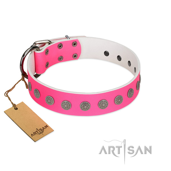 Designer decorations on genuine leather collar for comfortable wearing your pet