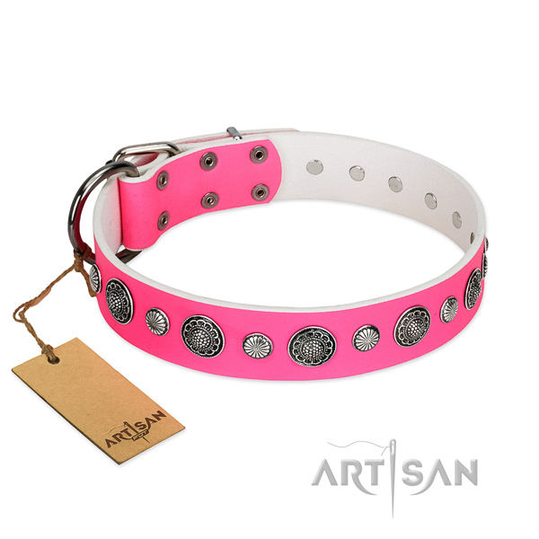 Top notch full grain leather dog collar with rust-proof fittings
