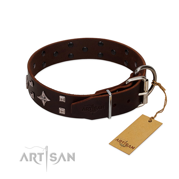 Extraordinary genuine leather collar for your doggie stylish walks