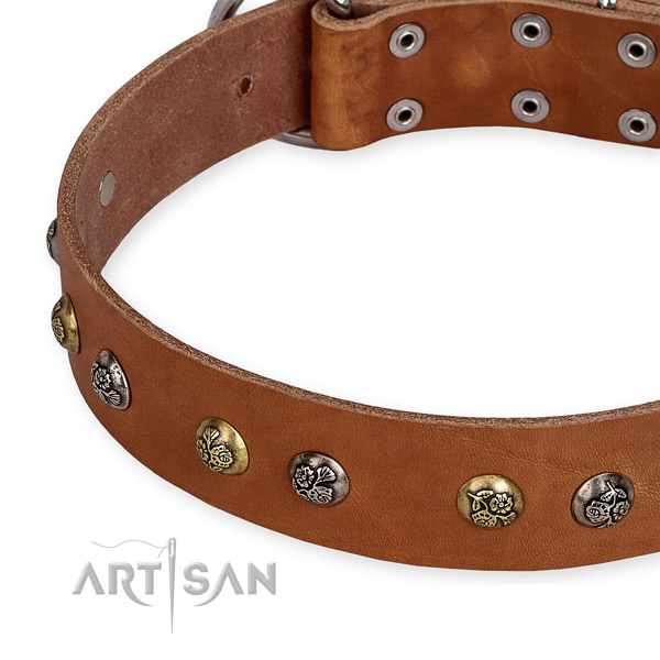 Natural genuine leather dog collar with inimitable corrosion resistant embellishments