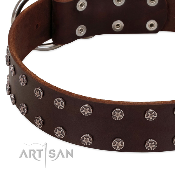 Gentle to touch leather dog collar with decorations for your canine