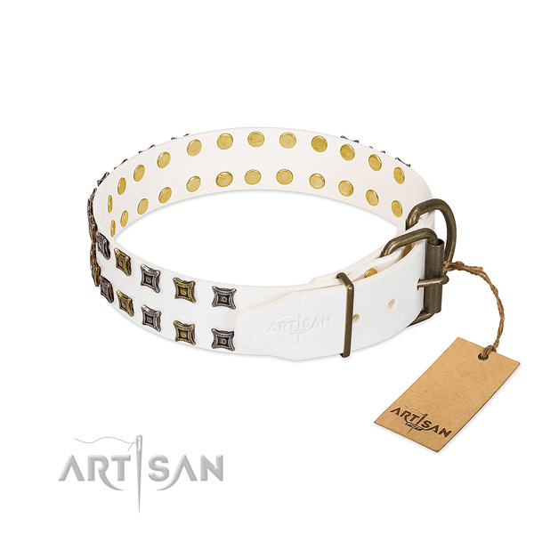 Full grain leather collar with stylish design adornments for your doggie