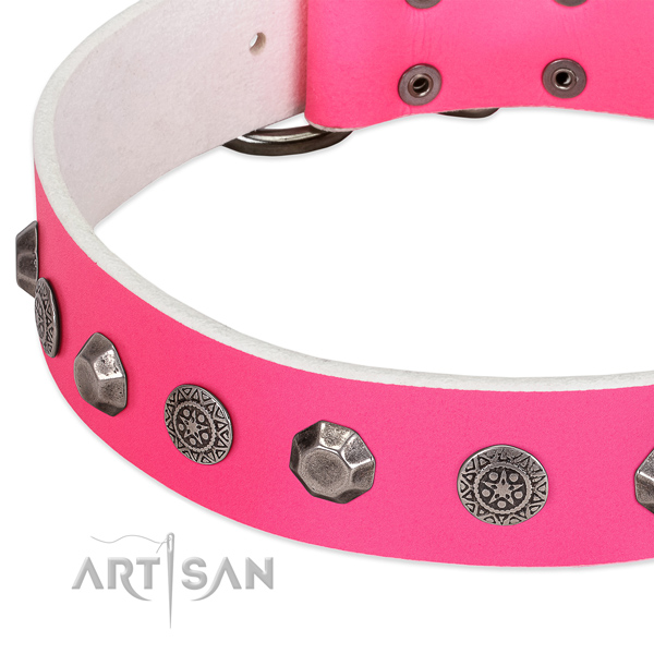 Trendy genuine leather collar for your doggie daily walking