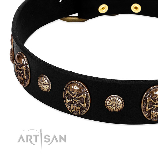 Full grain natural leather dog collar with exquisite studs