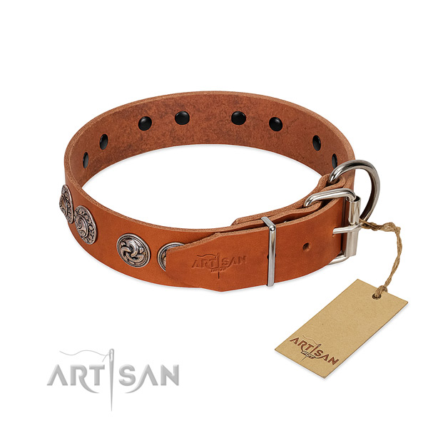 Remarkable genuine leather collar for your canine walking