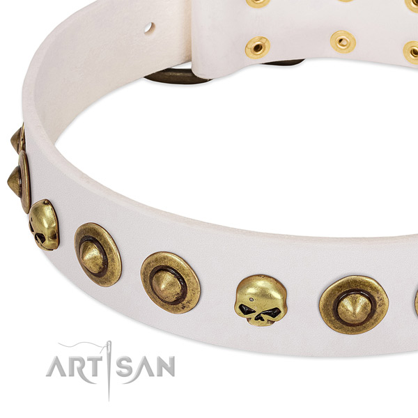 Trendy studs on full grain natural leather collar for your canine