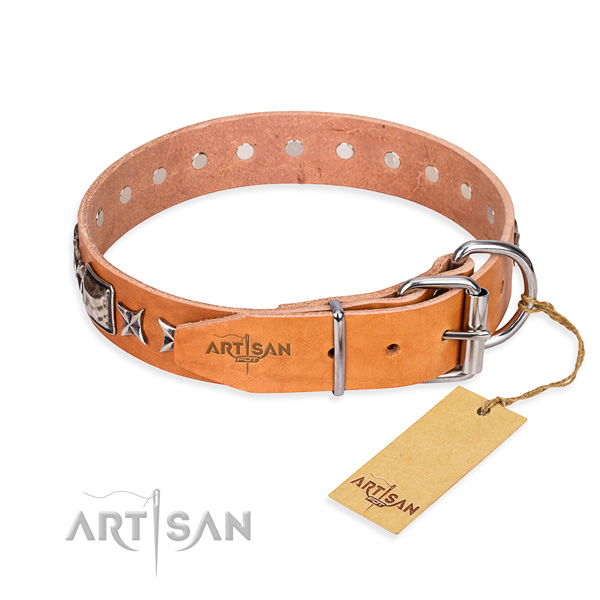 Top quality studded dog collar of full grain leather